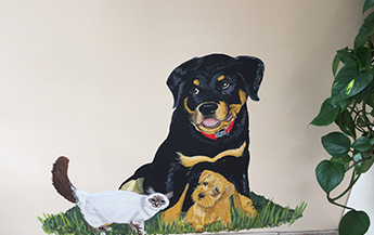 Dog and Cat Mural
